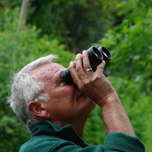 Allan Roffey Bird Watching Binoculars